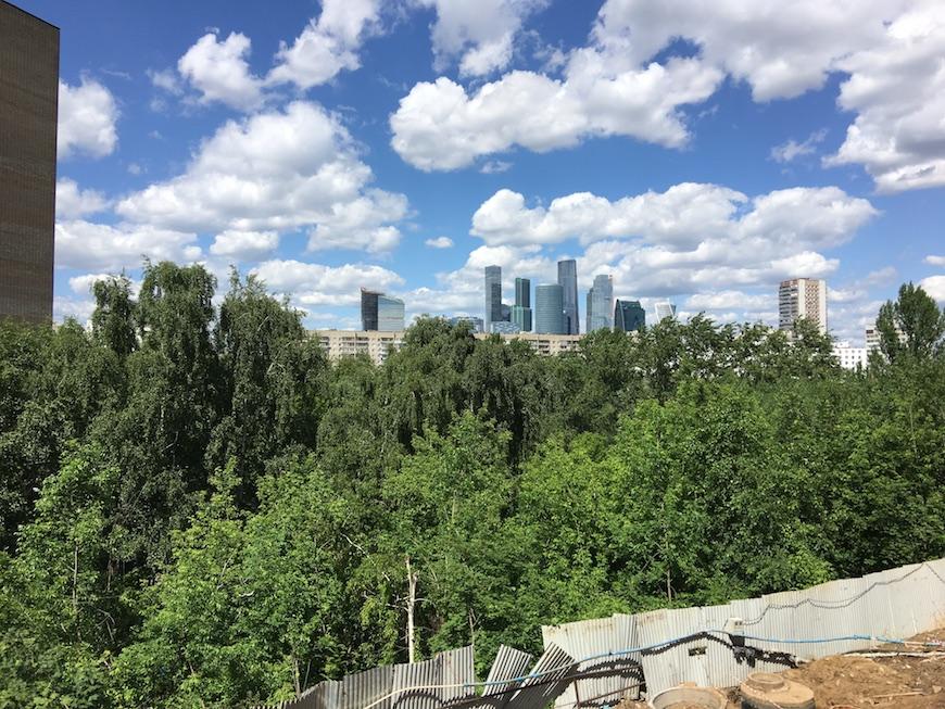 """Вид на кроны деревьев с высоты первого этажа ЖК """"Воробьев Дом"""""""